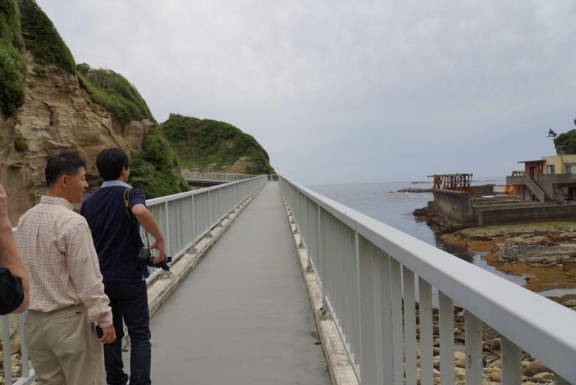 海中公園 地層