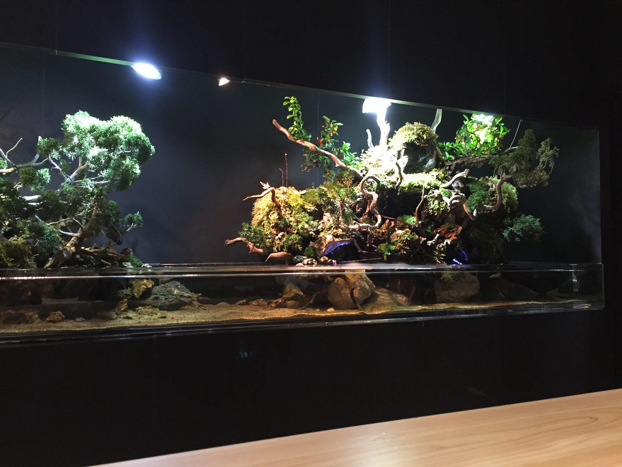 庭 Garden of four seasons (ガーデンオブフォーシーズンズ)|銀座の会員制隠れ家レストランでディナー