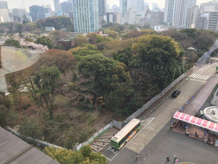 WAKANUI(ワカヌイ) から見下ろす増上寺